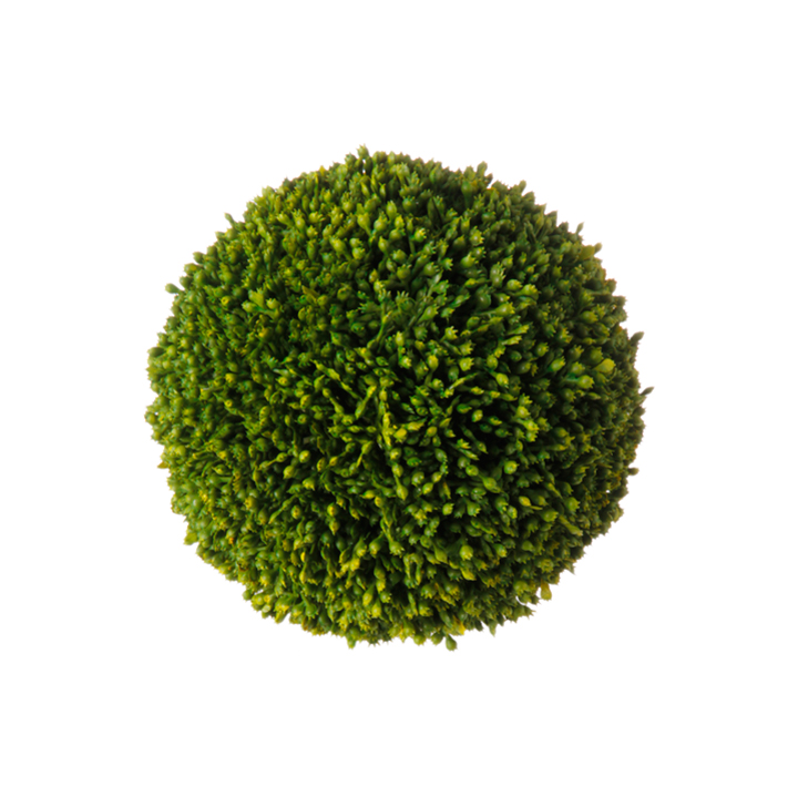 Ball - Sedum Ball, Large