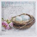 Canvas - Bird Nest w/Blue Eggs
