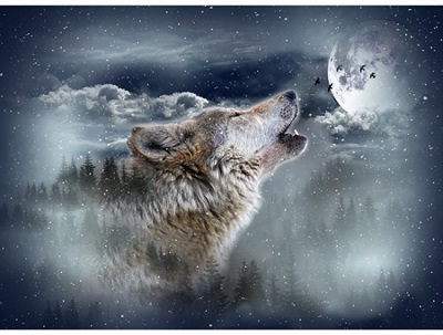 Hoffman California - Call of The Wild - 32' Wolf Panel - Moon Struck, Multi