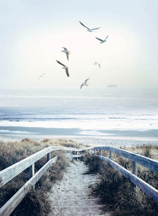 Hoffman California - Call of the Wild - 32' Beach Steps Panel, Atlantic
