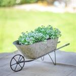 Wheelbarrow Planter - Tabletop Wheelbarrow