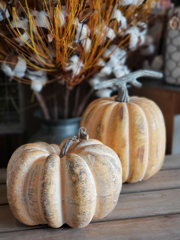Cream & Orange Pumpkins